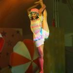 circo 223